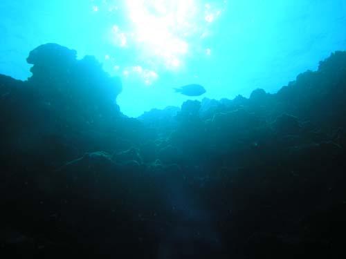2月15日穏やかな海~~~(^皿^)_c0070933_17295381.jpg