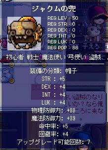 d0048430_264437.jpg
