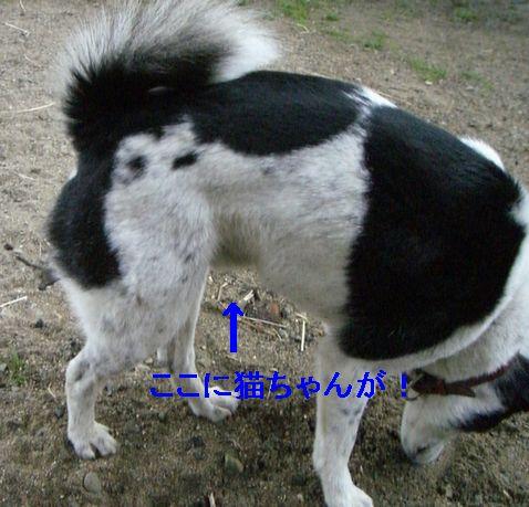 f0053952_12115281.jpg