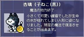 f0041933_17213627.jpg