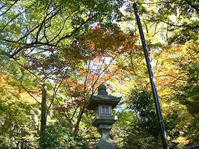 宝満宮 竃門神社_a0042310_14444950.jpg