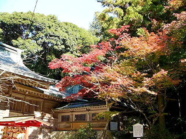 宝満宮 竃門神社_a0042310_1445810.jpg