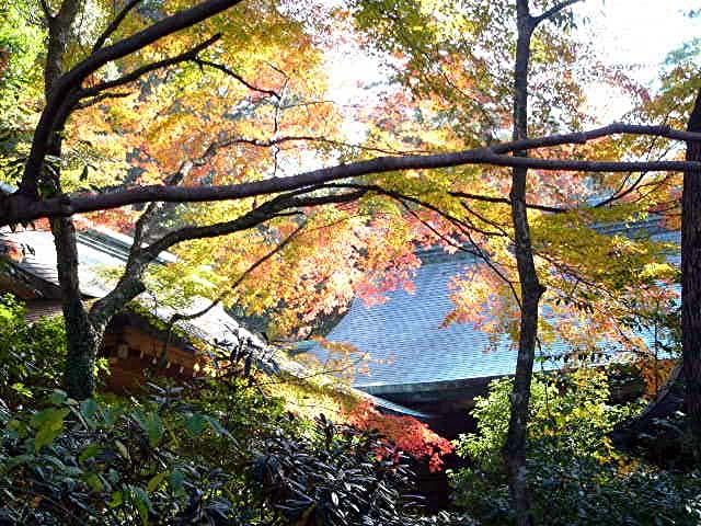 宝満宮 竃門神社_a0042310_14473282.jpg