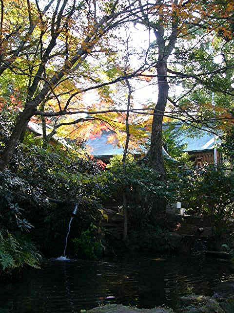 宝満宮 竃門神社_a0042310_14475148.jpg