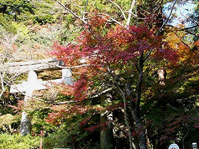 宝満宮 竃門神社_a0042310_14482867.jpg