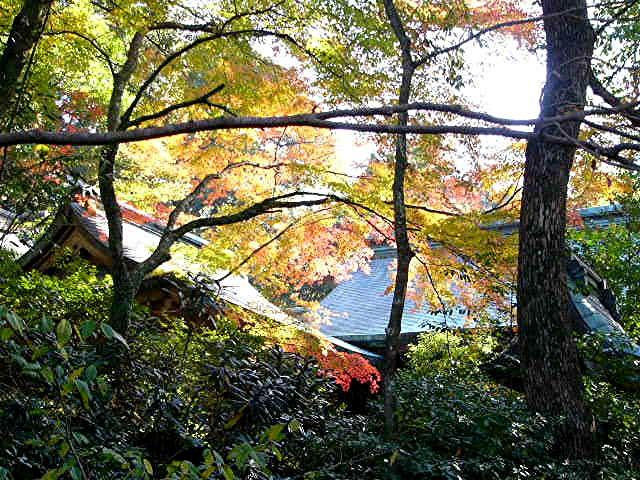 宝満宮 竃門神社_a0042310_14484567.jpg