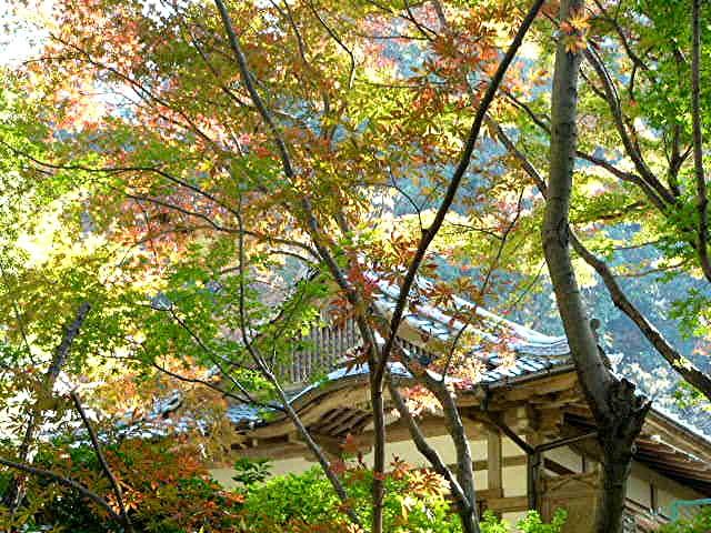 宝満宮 竃門神社_a0042310_14492444.jpg