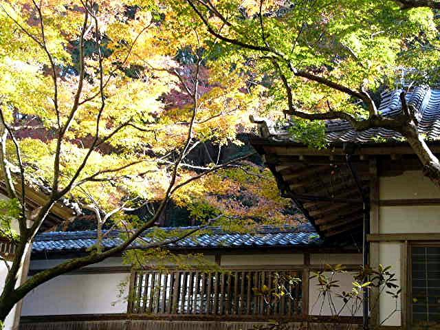 宝満宮 竃門神社_a0042310_14493899.jpg