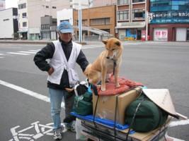 再びお遍路ワンコ_c0038434_1657068.jpg