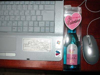 とってもうれしいバレンタイン_e0087201_2251202.jpg