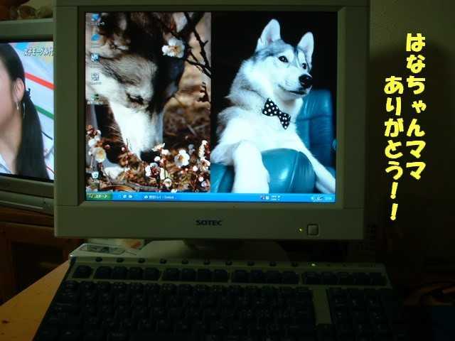f0000557_23161688.jpg