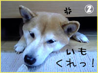 c0060620_0434747.jpg