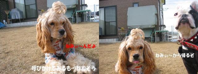a0057438_20124730.jpg