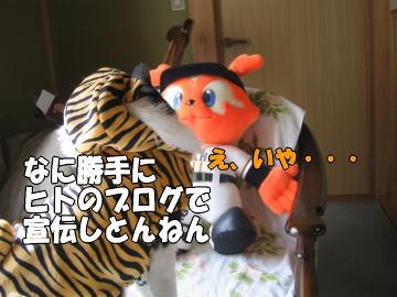 b0041182_0244265.jpg
