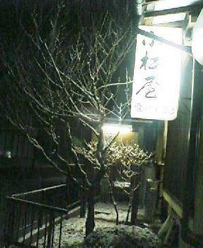 今日の川内村_d0027486_20291914.jpg