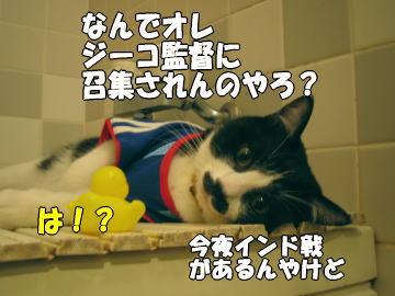 b0041182_00212.jpg
