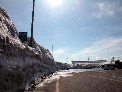 新井の雪_e0087201_1738012.jpg