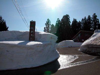 新井の雪_e0087201_1745666.jpg