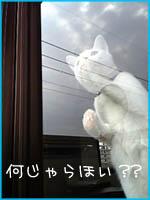 c0060620_18415563.jpg