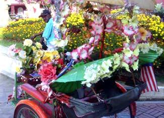 【6058】 イーちゃんの見た花のある風景_e0083820_23264511.jpg