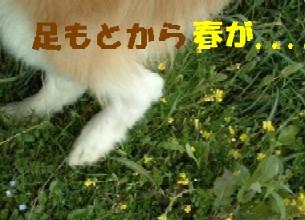 c0025171_2120591.jpg