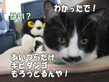 b0041182_0491289.jpg