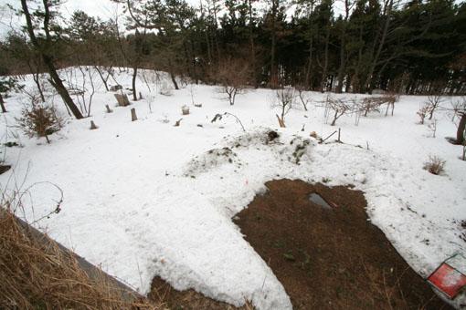 アトリエの芝棟屋根:雪がほとんどない_e0054299_11272258.jpg
