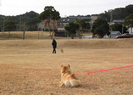 2006年2月24日荒川静香、金メダル!_f0060461_11283131.jpg