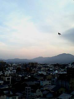 京都_e0051174_7285582.jpg