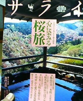 心に染みる桜旅_d0027486_22524397.jpg