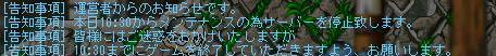 f0065195_051279.jpg