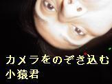 d0013324_10115493.jpg