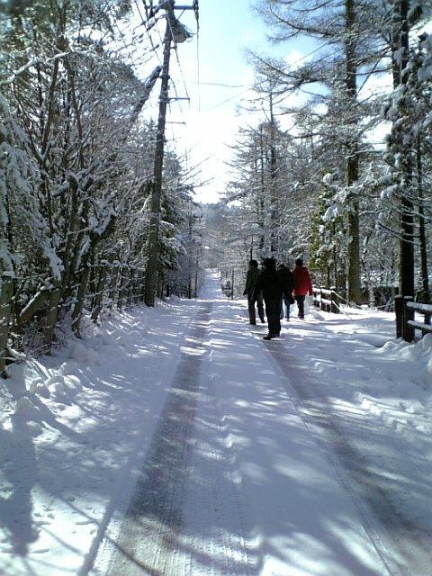 ばいよりん弾き雪景色に蹶る_b0019333_15314586.jpg