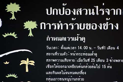 b0070482_22541542.jpg