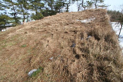 芝置屋根の雪がなくなる_e0054299_13273592.jpg