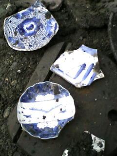 速報、旧平城の外堀から皿。_e0068696_2032747.jpg