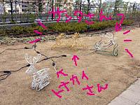 b0019611_22244032.jpg