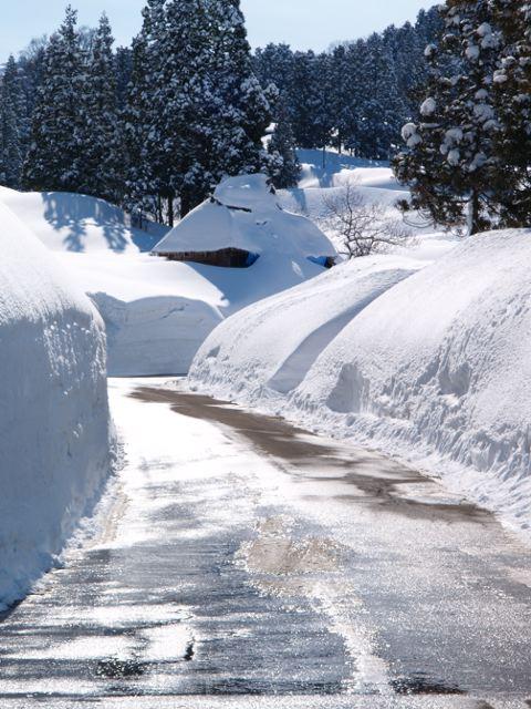 あの家の雪を掘る!_a0025576_22141730.jpg