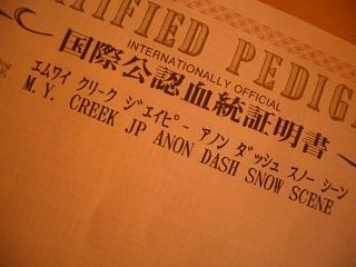 f0018144_1954080.jpg