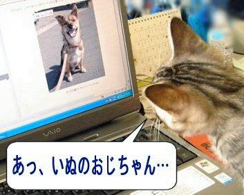 a0039366_0305731.jpg