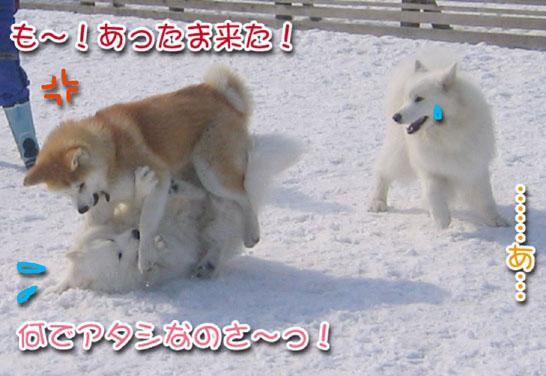 ひなたちゃんと桃_a0044521_2359214.jpg