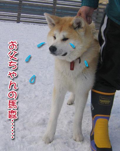 ひなたちゃんと桃_a0044521_0140100.jpg