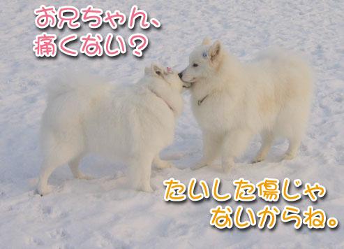 ひなたちゃんと桃_a0044521_0193568.jpg