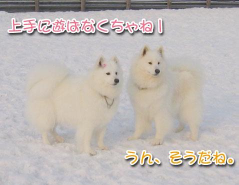 ひなたちゃんと桃_a0044521_021317.jpg
