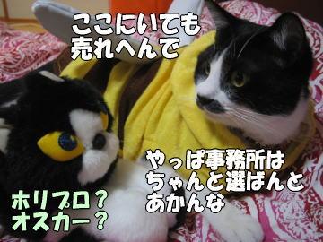 b0041182_646201.jpg