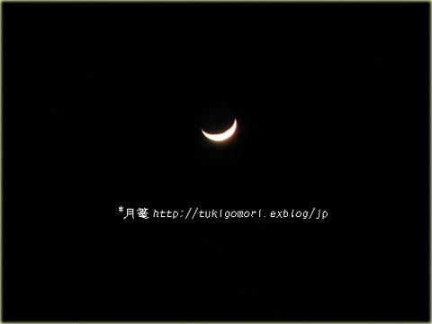 a0019967_21125013.jpg