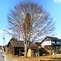 今日の川内村_d0027486_1661739.jpg
