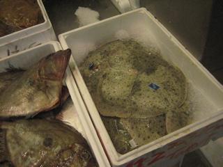 Fish market_b0046388_2130999.jpg