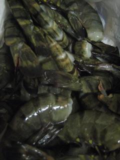 Fish market_b0046388_21473641.jpg