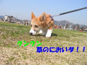 e0077528_1823516.jpg